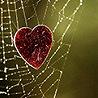 Любовная зависимость симптомы у женщин