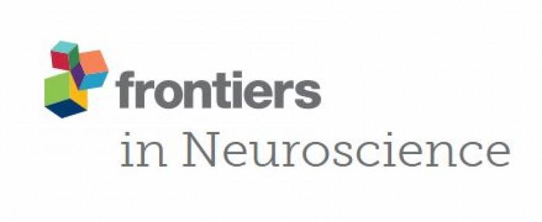 Картинки по запросу Frontiers in Neuroscience