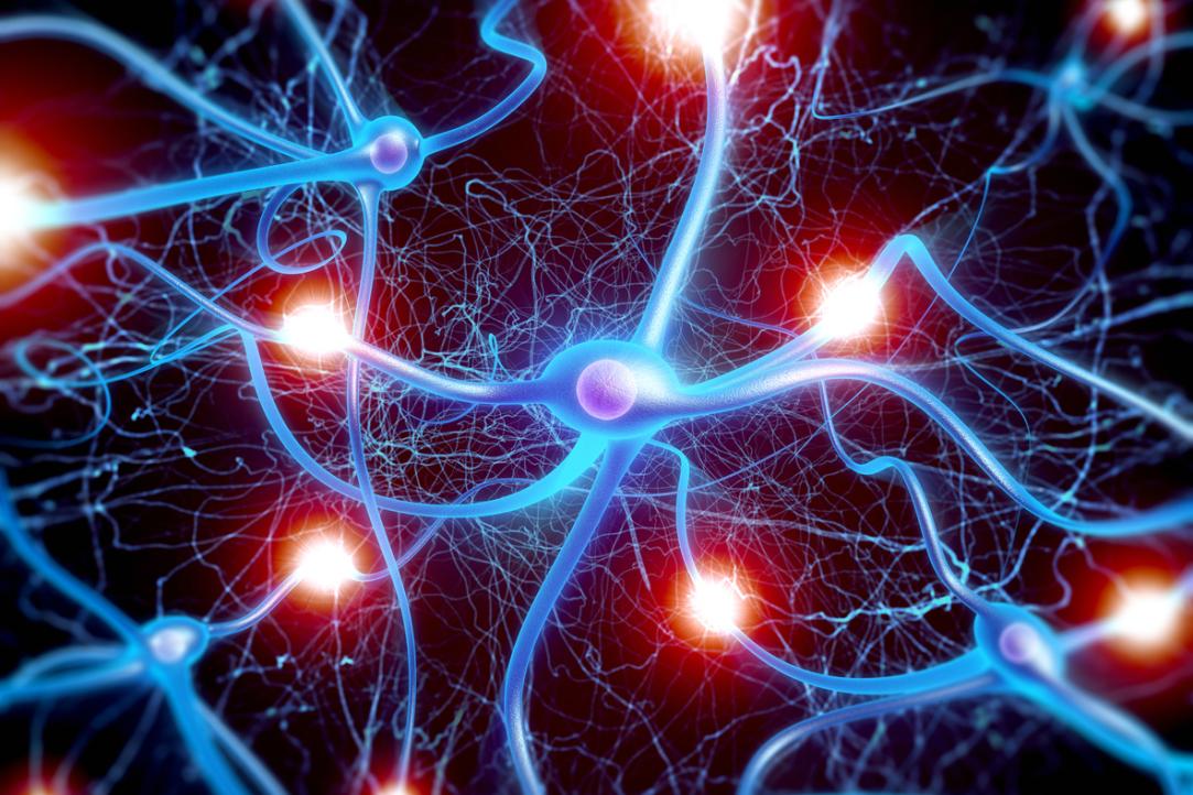 neuropsychology neurology and movie awakenings