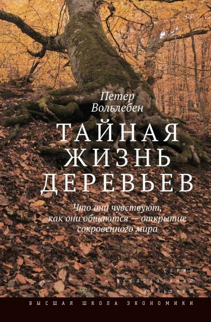Тайная жизнь деревьев. Что они чувствуют, как они общаются — открытие сокровенного мира
